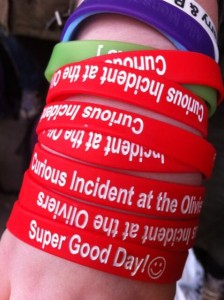 Lucy's Curious Wrist Bands